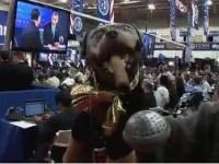 Triumph The Insult Comic Dog attends the final Presidential debate (video)