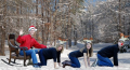 25 Captions of Christmas contest: December 9th, the family sleigh